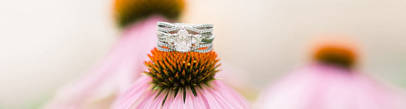 Wedding ring on a flower in Maine